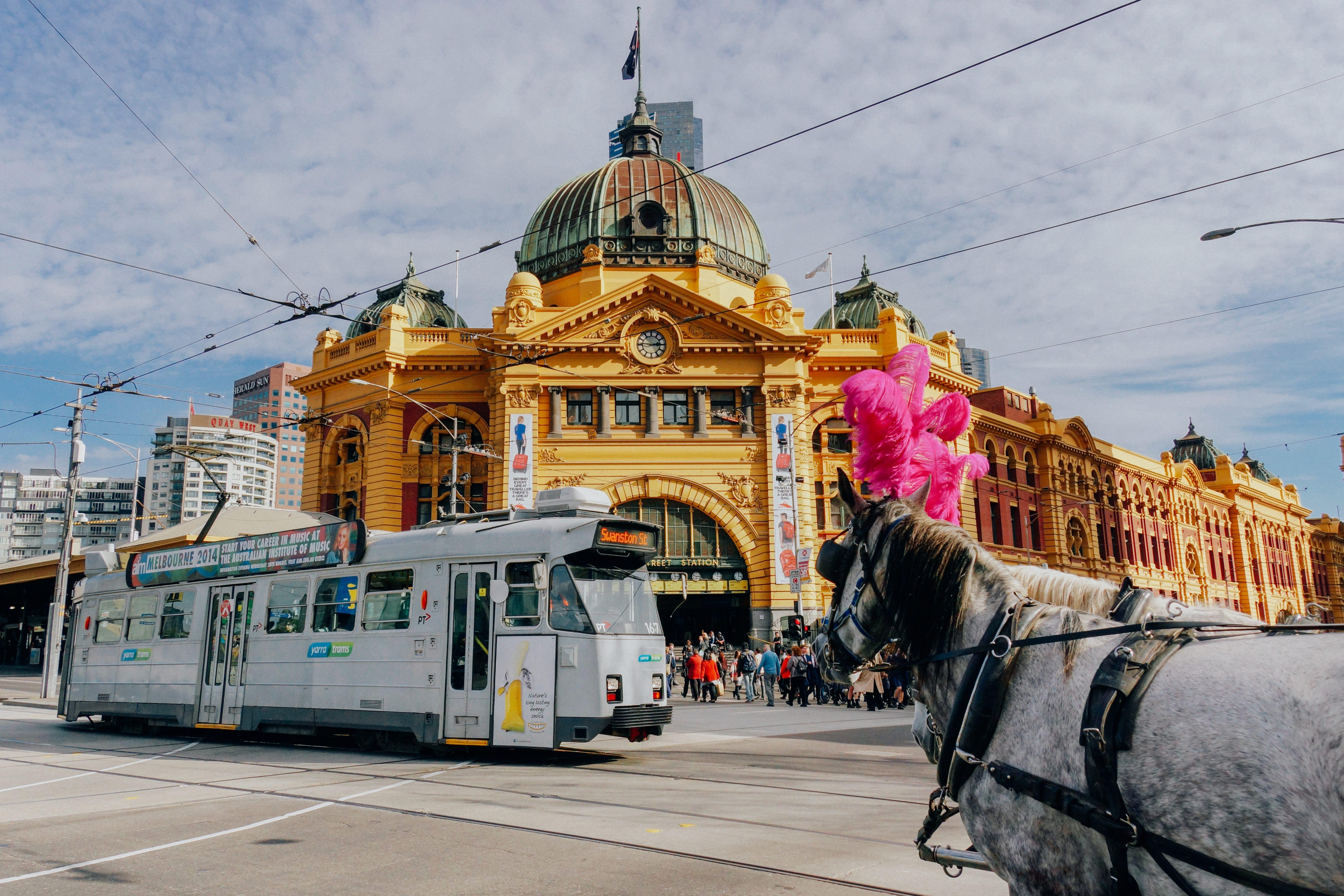 Descubre todo sobre Melbourne, Australia