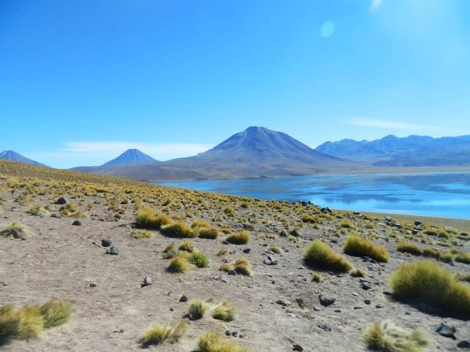 Lagunas Altiplanicas. Own picture.