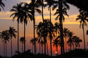 Costa esmeralda - Veracruz - Playas de México