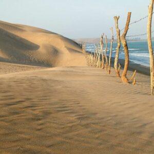 Chachalacas - Playas de México
