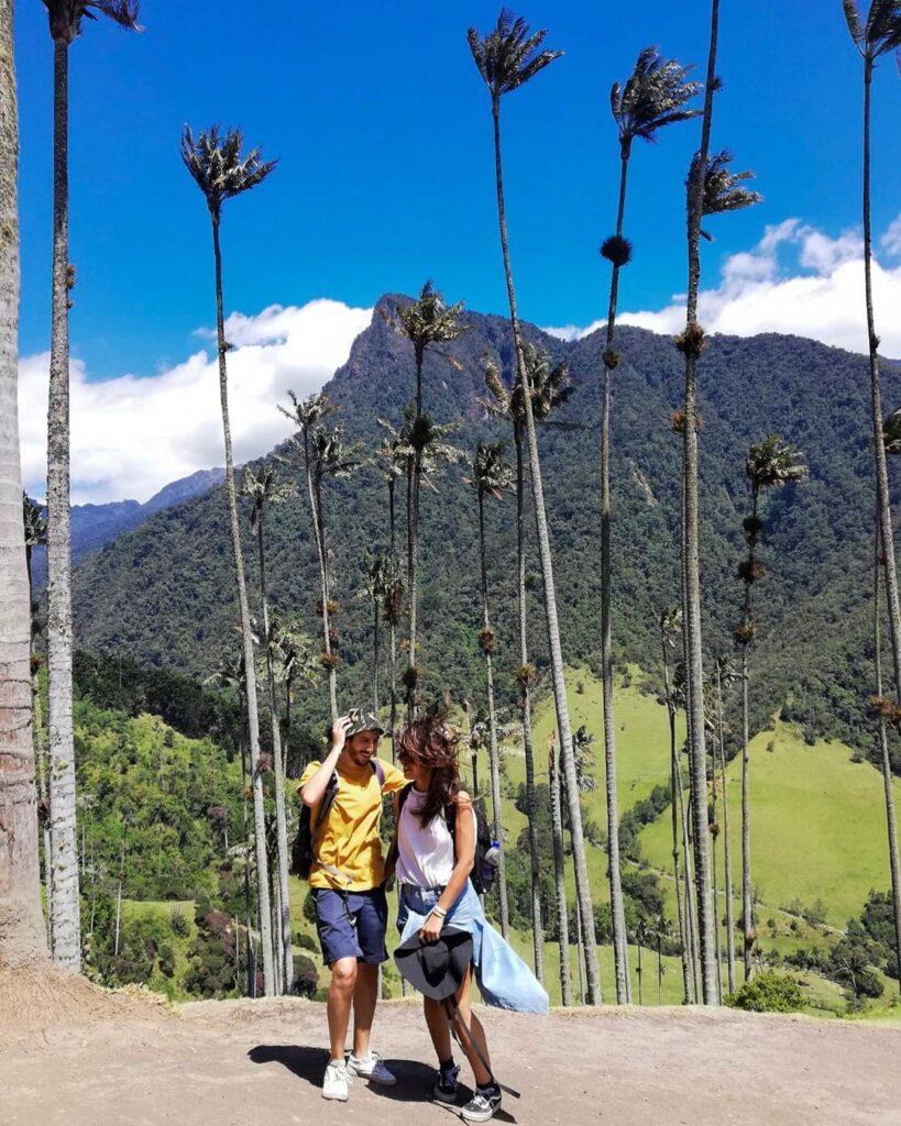El Valle de Cocora en Salento-Quindío