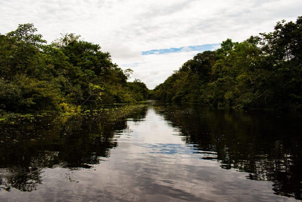 Dentro de la amazonía peruana