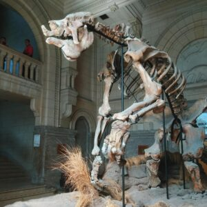 Museos en Buenos Aires