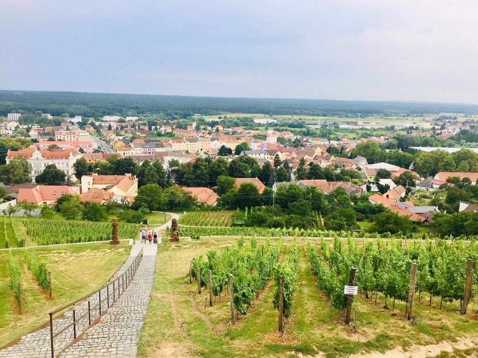 Viñedos de la Toscana checa