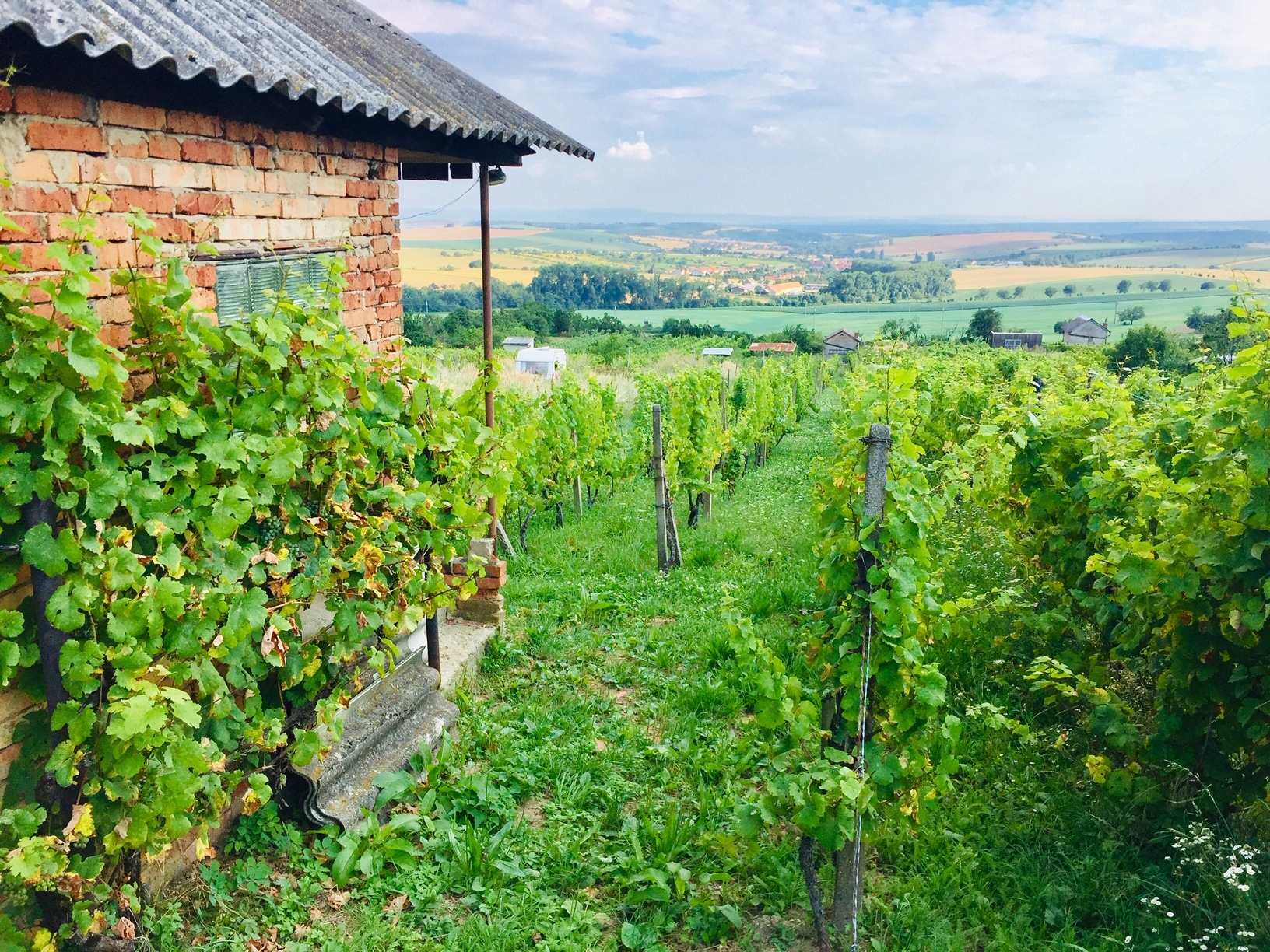 Paisajes de Moravia
