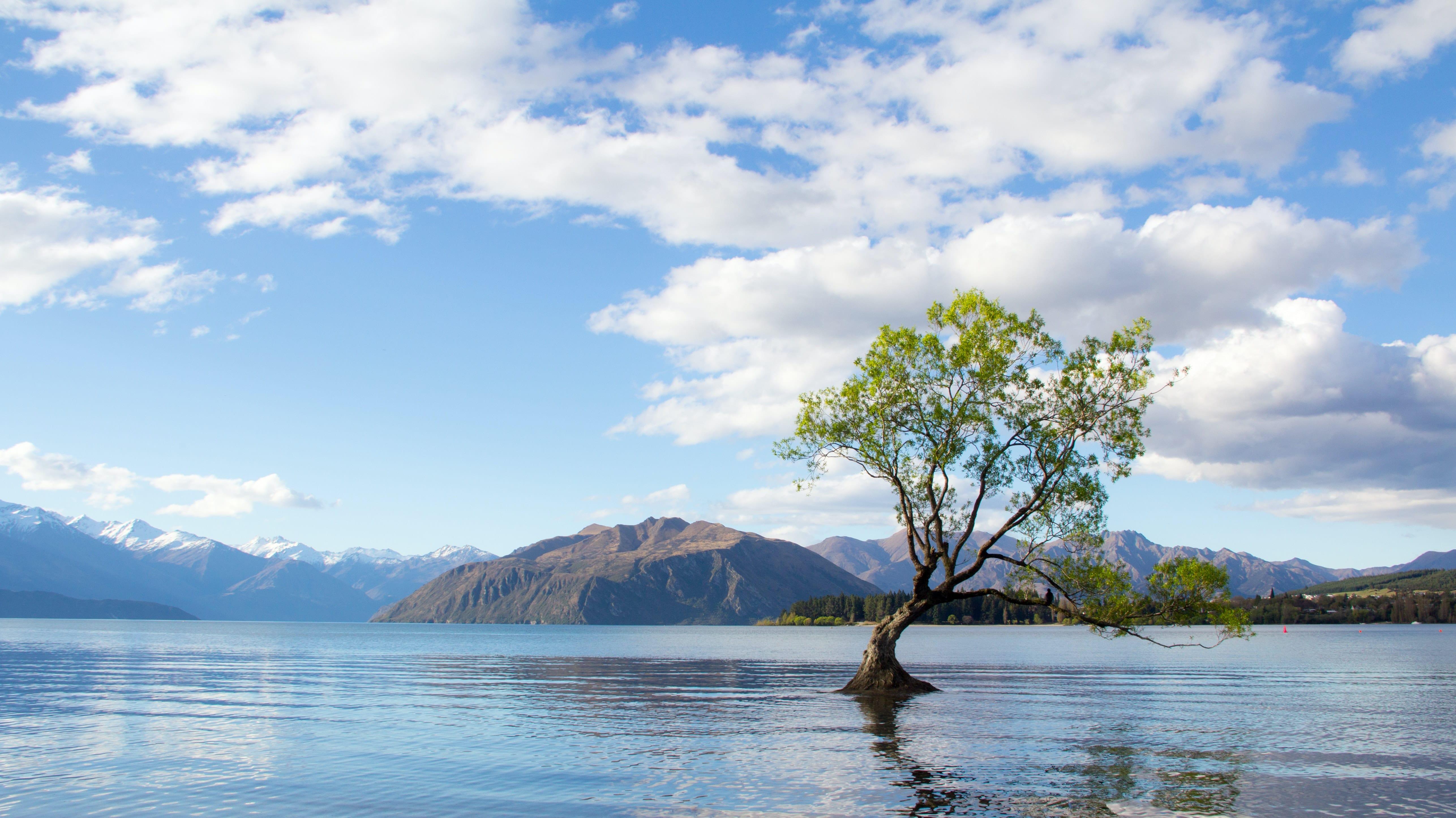 Que ver en Nueva Zelanda