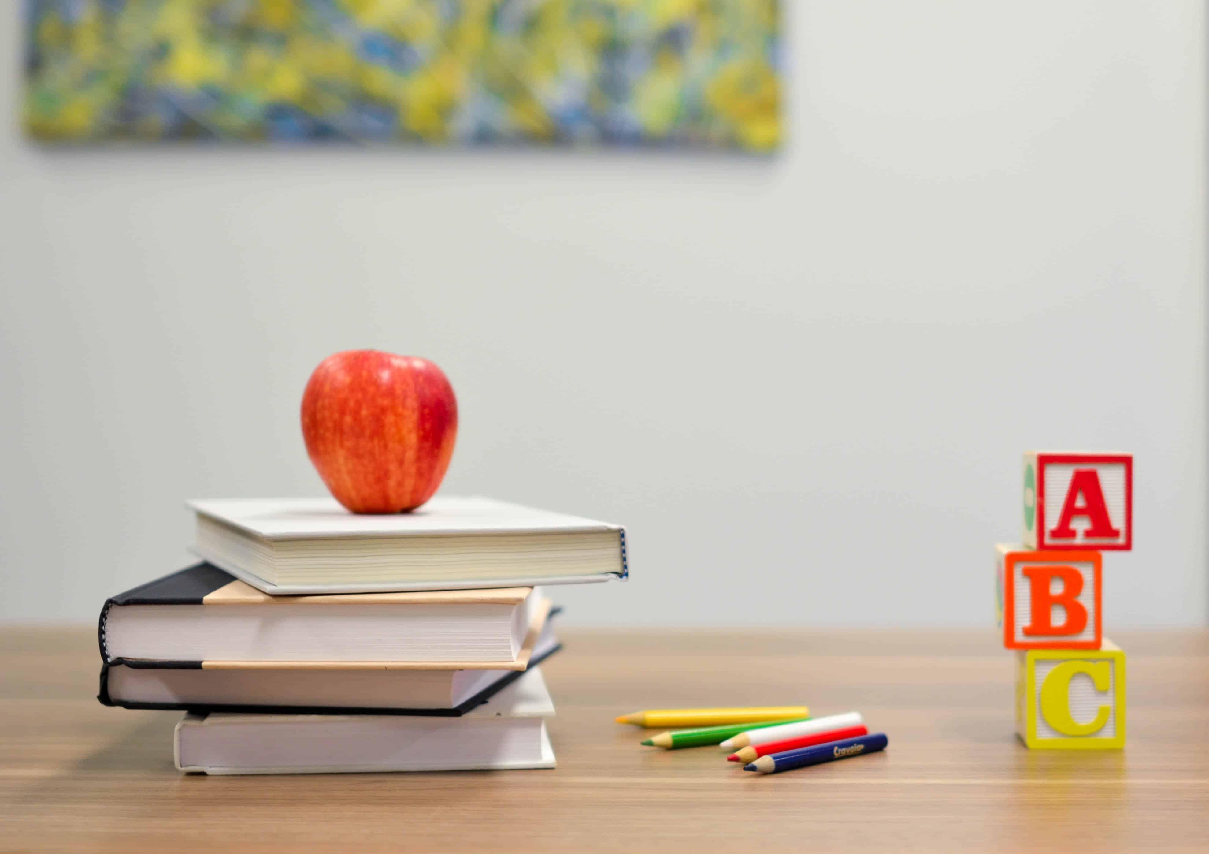 Libros y educación, claves de por qué en Finlandia son tan felices